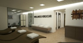 WELLNESS_CAM05a